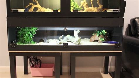 led lights for snake tank snake reptile room tour with cage