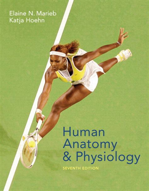 human anatomy physiology 2nd edition books marieb hoehn human anatomy physiology pearson
