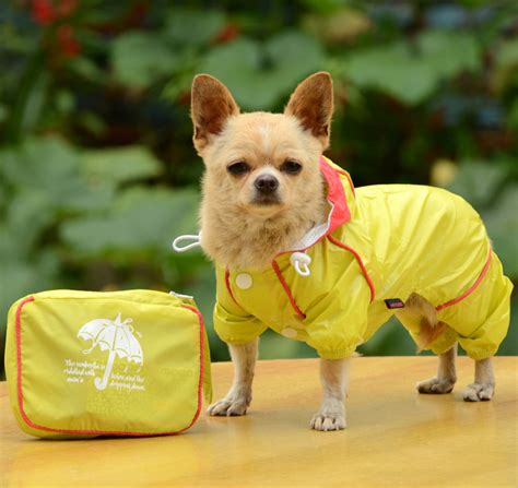 puppy raincoat raincoats for dogs large images