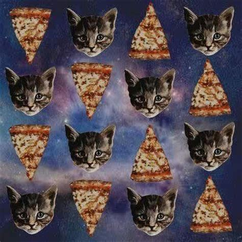 pizza kittens trippy cat pizza cats grow your own and pizza