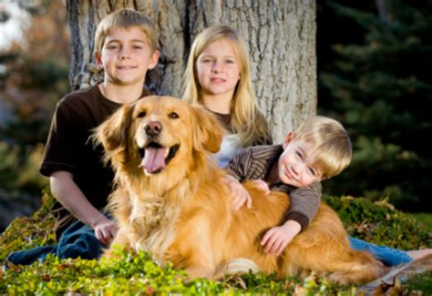 family photos with dogs protect from bites tails of the city