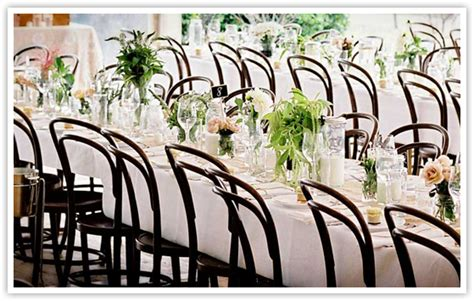 white bentwood chairs wedding event marquee hire sydney chair hire co