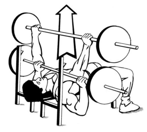 bench press person how to bench press lean it up
