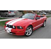 2006 Ford Mustang  Information And Photos MOMENTcar