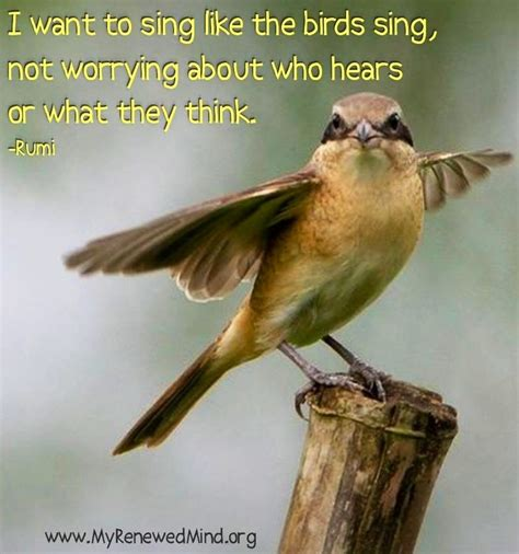 quotes about birds singing quotes