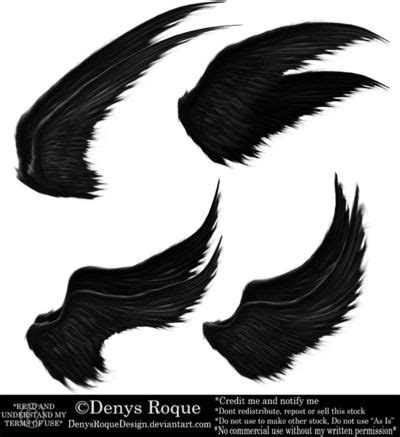 alas negras best 25 alas negras ideas on alas de 225 ngel negro el angel malvado and jaula de ratas