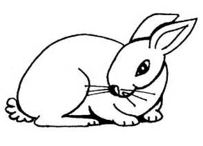 printable rabbit coloring pages coloring