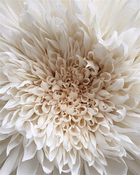 a new flowering 1000 new giant flowers painstakingly crafted out of thousand of paper petals