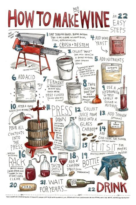make your own wine at home illustrated infographic