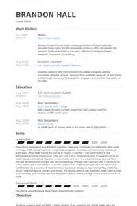 mover resume samples visualcv resume samples database