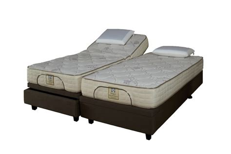 sealy adjustable king bed designer series beds