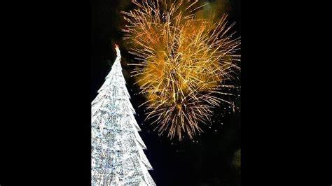where to buy affordable christmas tree in philippines tallest tree in the philippines 2017