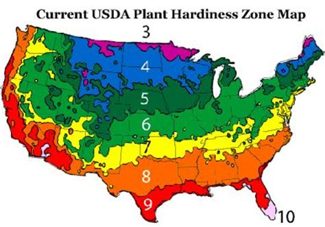 gardening zones virginia growing zone 5 omaha nebraska gardening