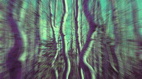 ilusiones opticas weed ilusion gif tumblr