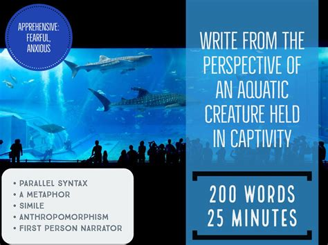 word challenge amelia morton on quot 200 word challenge booklet is
