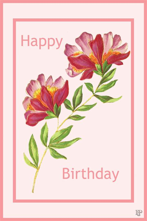Flowers With Gift Card - flower birthday cards gangcraft net