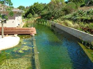 natural pool eco friendly and chlorine free the true potential of