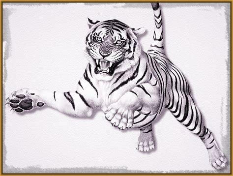 imagenes para dibujar tigres imagenes de tigres para dibujar a lapiz archivos
