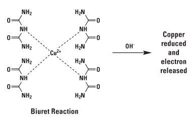 Potassium Sodium Tartrate Kalium Natrium Tartrat chemistry of protein assays thermo fisher scientific us