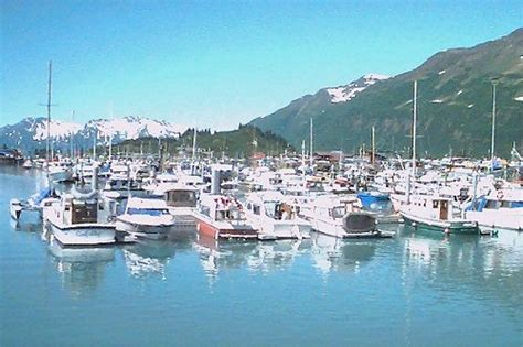 party boat fishing anchorage the official anchorage alaska travel guide from the