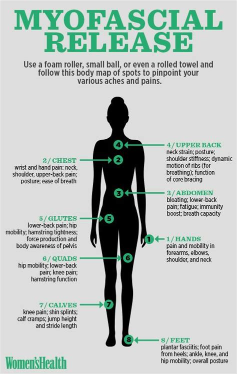 Myofascial Release Detox Symptoms 17 best images about anatomy and the on