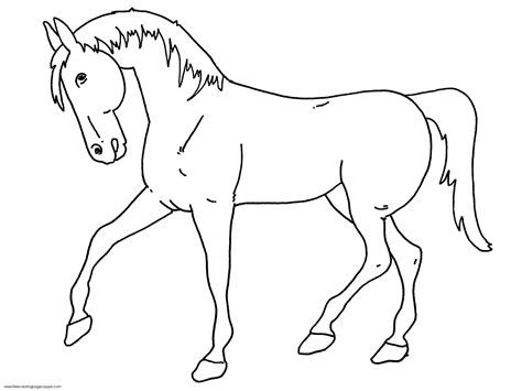 black and white coloring pages of horses horse coloring shets free printable horse outline to