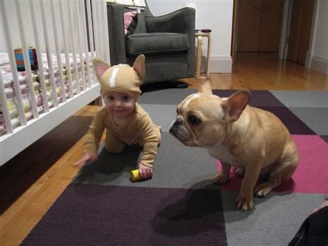 babies with puppies top 10 baby and puppy pictures