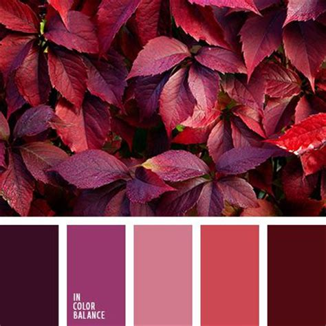 fall color schemes best 25 fall color schemes ideas on october