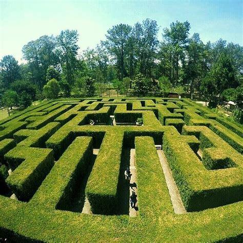 ulasan film maze runner bergaya seperti dalam film maze runner di labirin coban