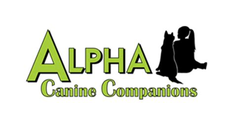already trained therapy dogs for sale day care melbourne alpha playcare