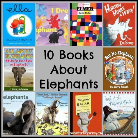 elephant picture books 17 best images about zoo animals on all about