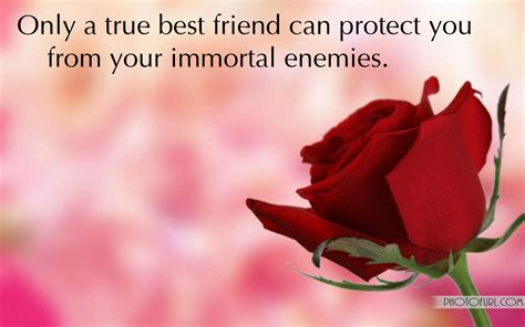 flower wallpaper with friendship quotes friendship wallpapers with quotes free wallpapers