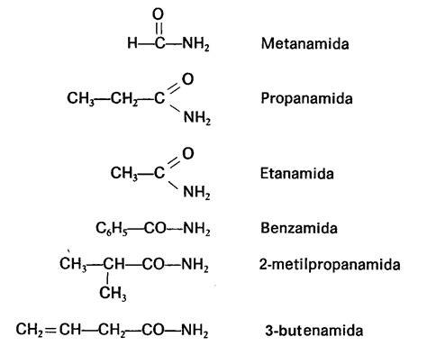 cadenas carbonadas de amidas amidas