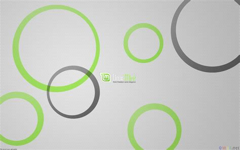 grey wallpaper with circles welcome wallsebot tumblr com