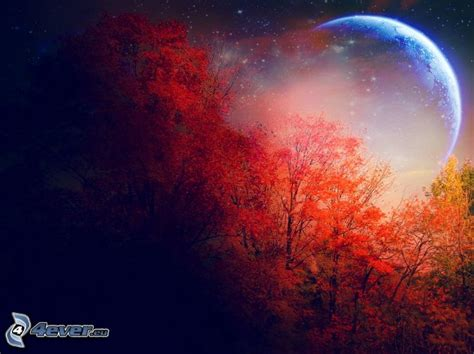 colorful moon wallpaper colorful autumn forest