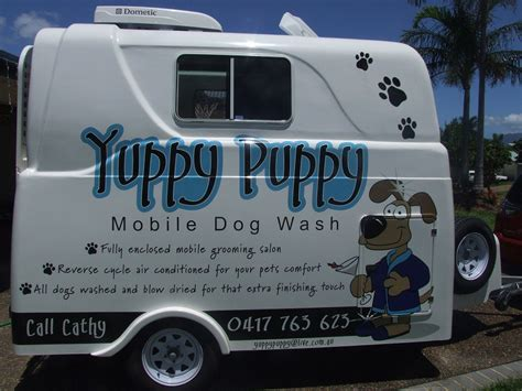 local mobile groomers yuppy puppy mobile grooming nerang pet groomers