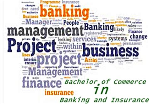 Mba In Banking And Insurance Scope by Top 6 Professional Courses After 12th Commerce