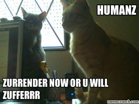 Scary Meme - stupid grumpy cat meme
