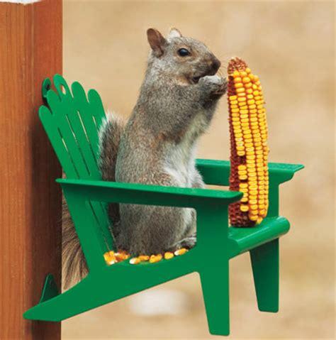 Squirrel Feeder Chair by Adirondack Chair Squirrel Feeder Neverchill