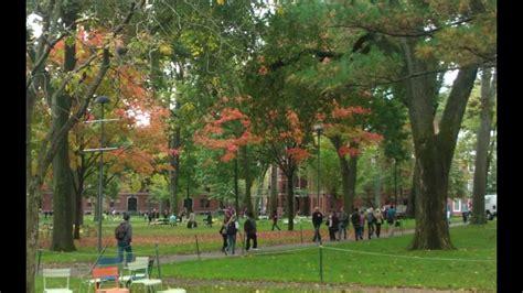 harvard colors early autumn colors in harvard yard and cambridge