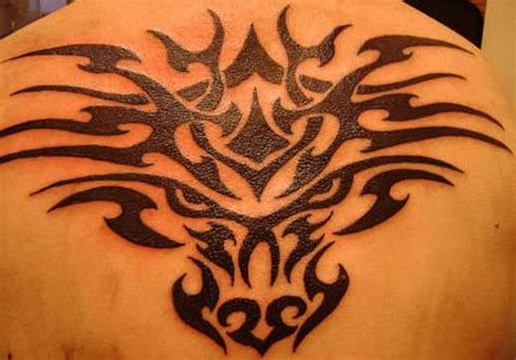 meaning behind tribal tattoos 35 best celtic wolf images on celtic