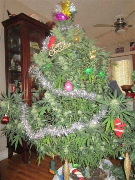 pot plant christmas altar dumpert nl oprotten met de sint