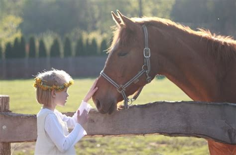 commercial girl riding horse little girl horse riding school free stock photos in jpeg