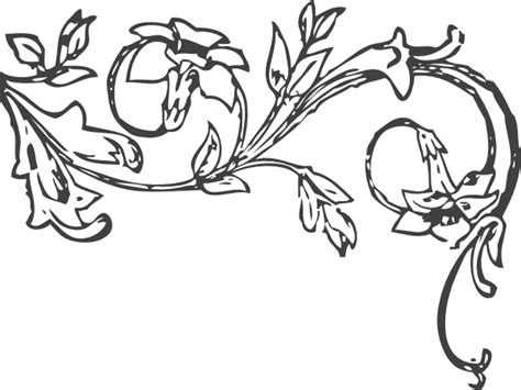 vine coloring pages floral vine clip at clker vector clip royalty free domain