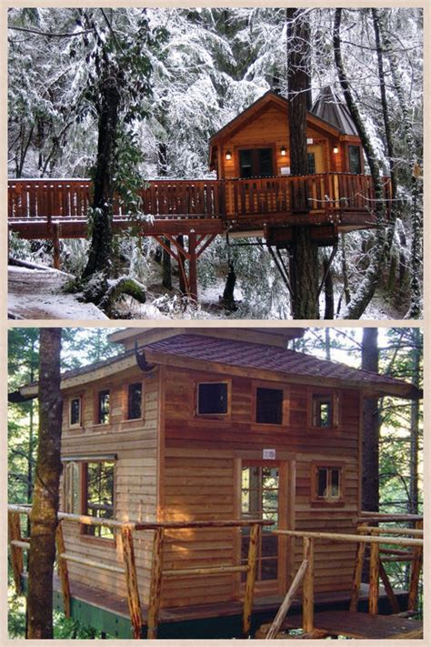 33 best images about tree houses on pinterest disney villas and resorts top 28 tree house hotel redwood forest tree house a