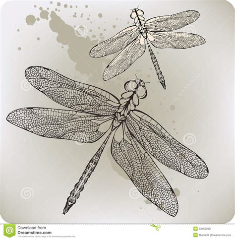 flying dragonfly hand drawing vector illustratio royalty