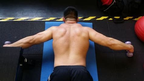 lower back pain bench press the truth about your benching pain it s not biceps