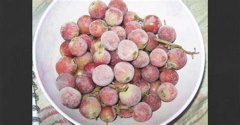 Grapes Diet Detox by Dr Oz 21 Day Sugar Detox Plan Lose Weight Frozen Grapes