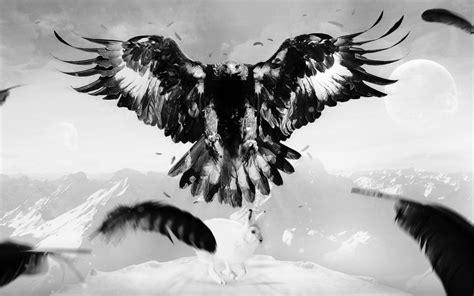 Kaos Anime Harley Davidson An American Original 02 fondos de pantalla monta 241 as monocromo plumas cuervo
