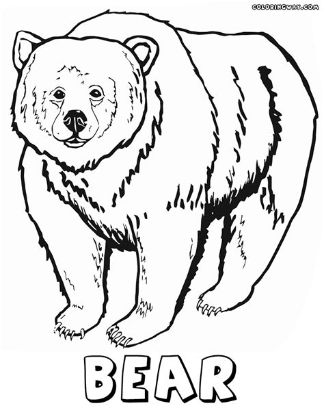 Grizzly Bear Coloring Pages Bing Images Grizzly Coloring Page